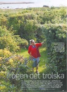 Allt om trädgård 13 2011. Foto:Carina Gran