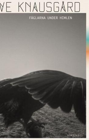 fåglarna_under_himlen